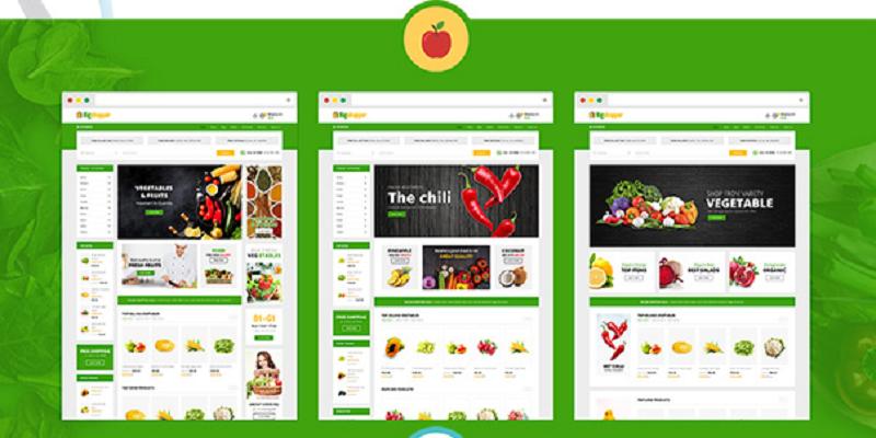 BigShopper - Multipurpose WooCommerce Theme