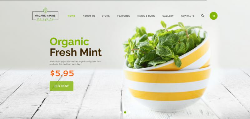Organic Store - Organic Food & Eco Products Theme