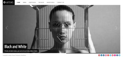 Artemis Photography Gallery Portfolio Theme