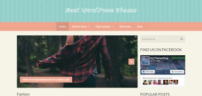 Best - Responsive WordPress theme