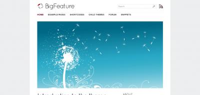 BigFeature - Wordpress Theme