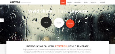 Calypso - MultiPurpose Theme