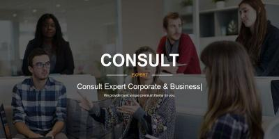 Consulting Business Finance and Professional Services - Consult Expert