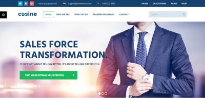 Cosine - Training, Coaching & Business WordPress Theme