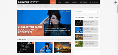 DayNight - WordPress Blog Theme