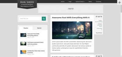 DualShock  - WordPress Blogging