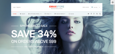 eMaxStore - Multipurpose eCommerce WordPress Theme