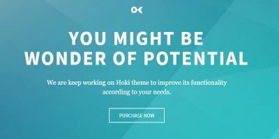 HOKI - Multi-Purpose Responsive WordPress & WooCommerce Theme