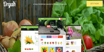 Organ - Organic Store & Flower Shop Responsive Magento Theme