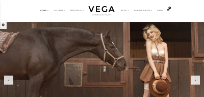 Photography Portfolio Gallery - Vega Theme