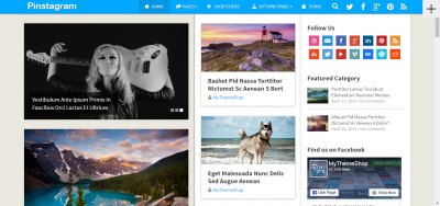Pinstagram - WordPress Blog Theme