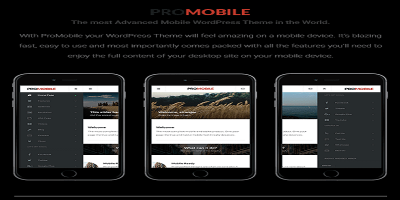 Pro Mobile - Mobile and Tablet Responsive WordPress Theme (WooCommerce Ready)