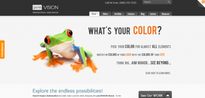 PureVISION WordPress Theme