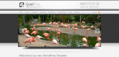 QualiFire WordPress Theme