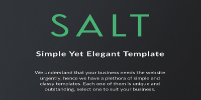 Salt - Multi-purpose HTML5 Template