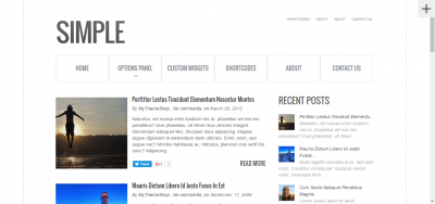 Simple - Responsive WordPress Theme