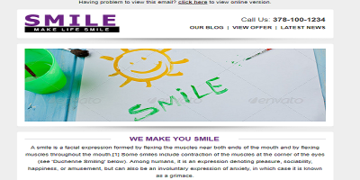 SMILE - Responsive + Business + Mailchimp E-mail