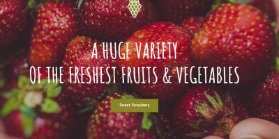 Vegan Food - Organic Store - Farm Responsive Woocommerce WordPress Theme