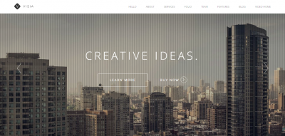 Visia - Responsive One Page Retina WordPress Theme